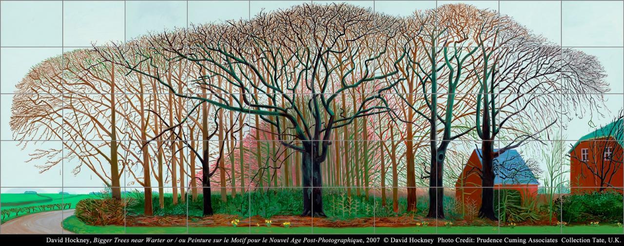 大卫.霍克尼 《华特附近的巨树群》 (又名后摄影时代的户外写生)的图片