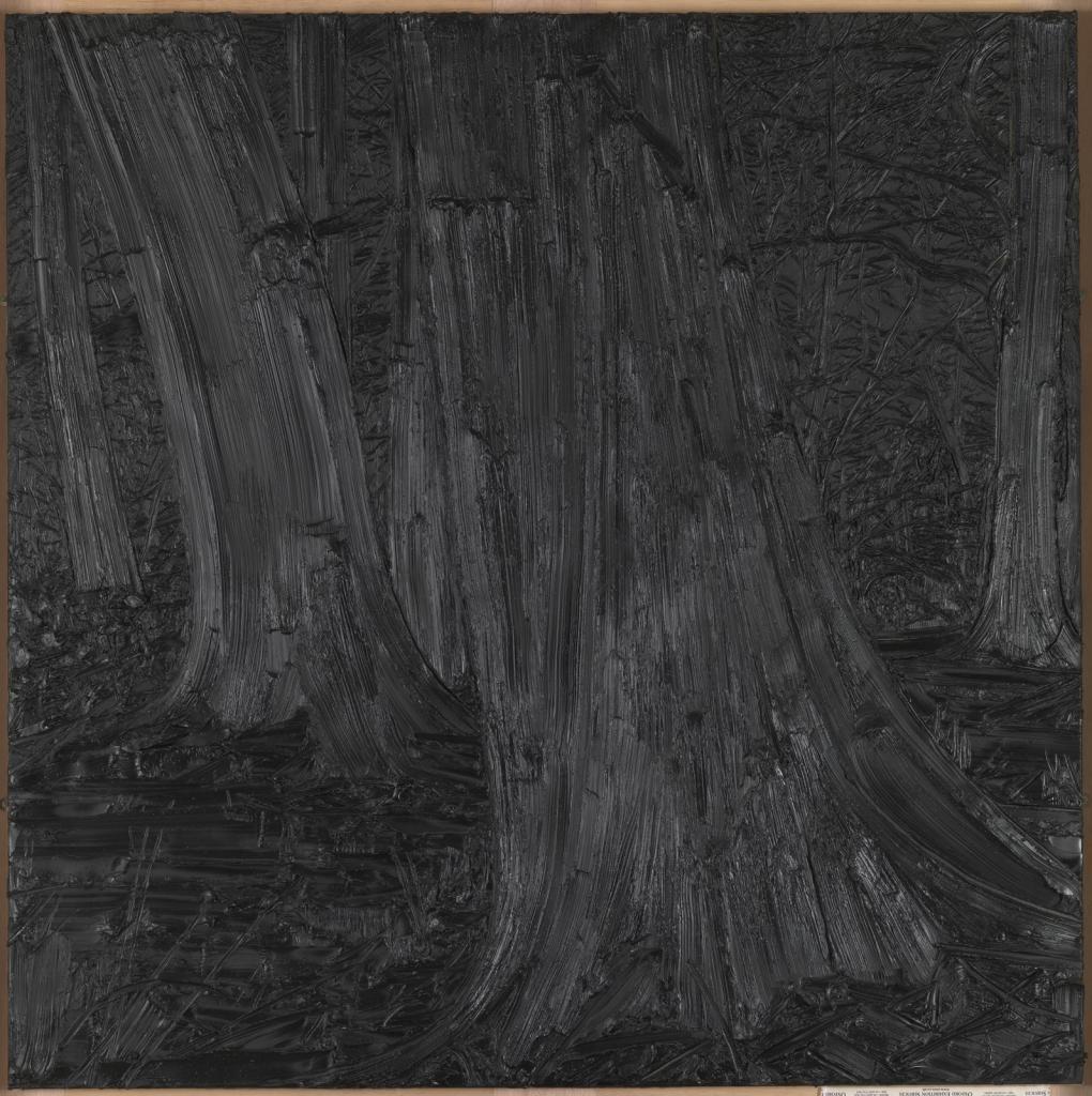 吉莲.卡内基《黑方块》的图片