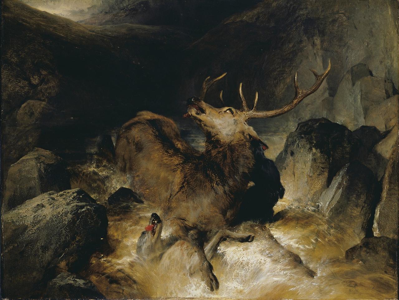 埃德英.亨利.兰西尔《在山洪间的鹿和猎鹿犬 (「被埋伏的雄鹿」)  》的图片