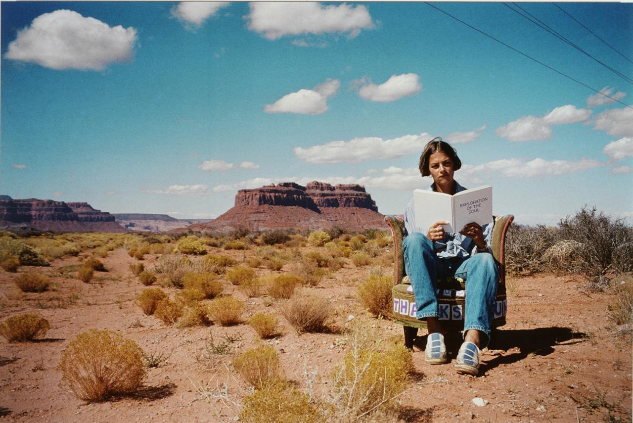 翠西‧艾敏《纪念碑谷》 (大型作品)的图片